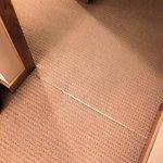 More rips in carpet