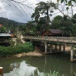 Φωτογραφία: Khao Sok Riverfront Resort