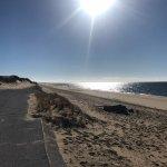 Herring Cove Beach Foto