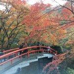 Foto de Kajikabashi