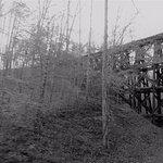 TVR Hiawassee Loop trestle