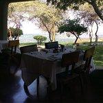 Foto de Lake Manyara Serena Lodge
