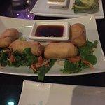 Vegan Spring rolls