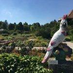 Botanischer Garten Muenchen-Nymphenburg