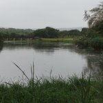 The hippo pool - a 10 minute walk from the rooms