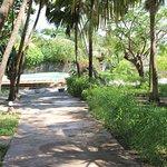 Photo of Villa de Coco Resort