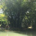 Photo of Martha Brae River