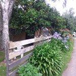 Photo of Coromandel Tui Lodge