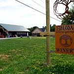 Shaw Winery