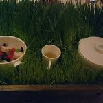 Meadow Rabbit (rabbit two ways served on a bed of live grass)