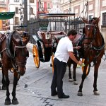 Carriages add to plaza