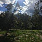 Zdjęcie Mt Barney Lodge Country Retreat