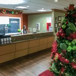 Festive Lobby for the Holidays