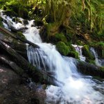 Foto de Cataratas Multnomah