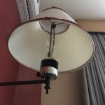 filthy lamp shade