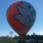 Photo of Hot Air Balloon Gold Coast