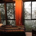 Bellavista Cloud Forest resmi