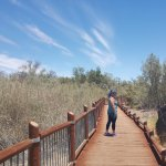 Beautiful board walks to various view points