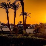 Foto de Hotel Al Jazira Beach & Spa