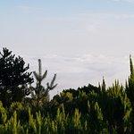 Photo of Enotel Golf Santo da Serra