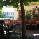 Najlepsi ambijent u celoj Srbiji. Restoran se nalazi na obali reke Tamis!