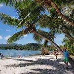 Photo of Cousine Island