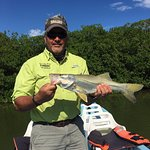 Snook from the Mangroves
