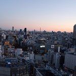 View of Shibuya from our room