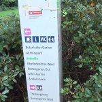 Rhododendronpark - Rosengarten