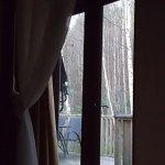 Zdjęcie Griffon Forest Lodges