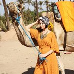 Great camels