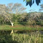 Photo de Sabi River Sun Resort