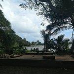 Zdjęcie Tropical Farms Macadamia Nut Farm and Farm Tour