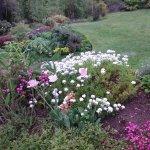 Jardin con permanente cuidad