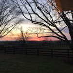 View out to the many pastures at sunrise