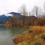 Fraser River Safari Boat Tour