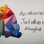 Beary Best! by a Beary Good Hostel! Foto