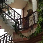 External staircase (with monkey!)