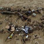 Alle Foto´s : Jimbaran Beach, aufgenommen am 17/18.11.2017, zu noch mehr Müllfoto´s hatten wir d