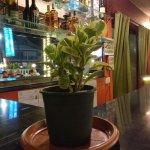Tulips Bar And Restaurant
