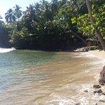 Cayenas del Mar