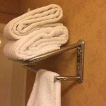 Broken Towel Rack