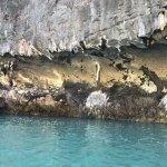 Photo of Pileh Bay