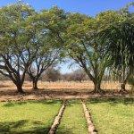Photo de Askari Wilderness Conservation Programme
