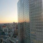 Royal Park Hotel The Shiodome, Tokyo Foto