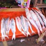 Ventas de pescados frescos en el mercado de Belen.