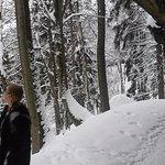 Winter hiking in the National park Bohemian Saxon Switzerland
