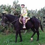 Photo of Golden Bay Horse Riding