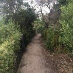 Moysey Walk