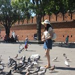 Asian Tourist feeding pigeons at the Tha Phae Gate, Chiang Mai City Wall